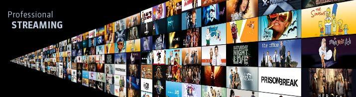 Virtual Meeting Web Live Streaming