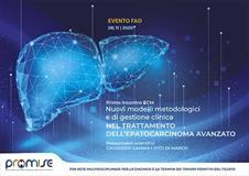 NUOVI MODELLI METODOLOGICI E DI GESTIONE CLINICA NEL TRATTAMENTO DELL' EPATOCARCINOMA AVANZATO- 28 NOVEMBRE 2020